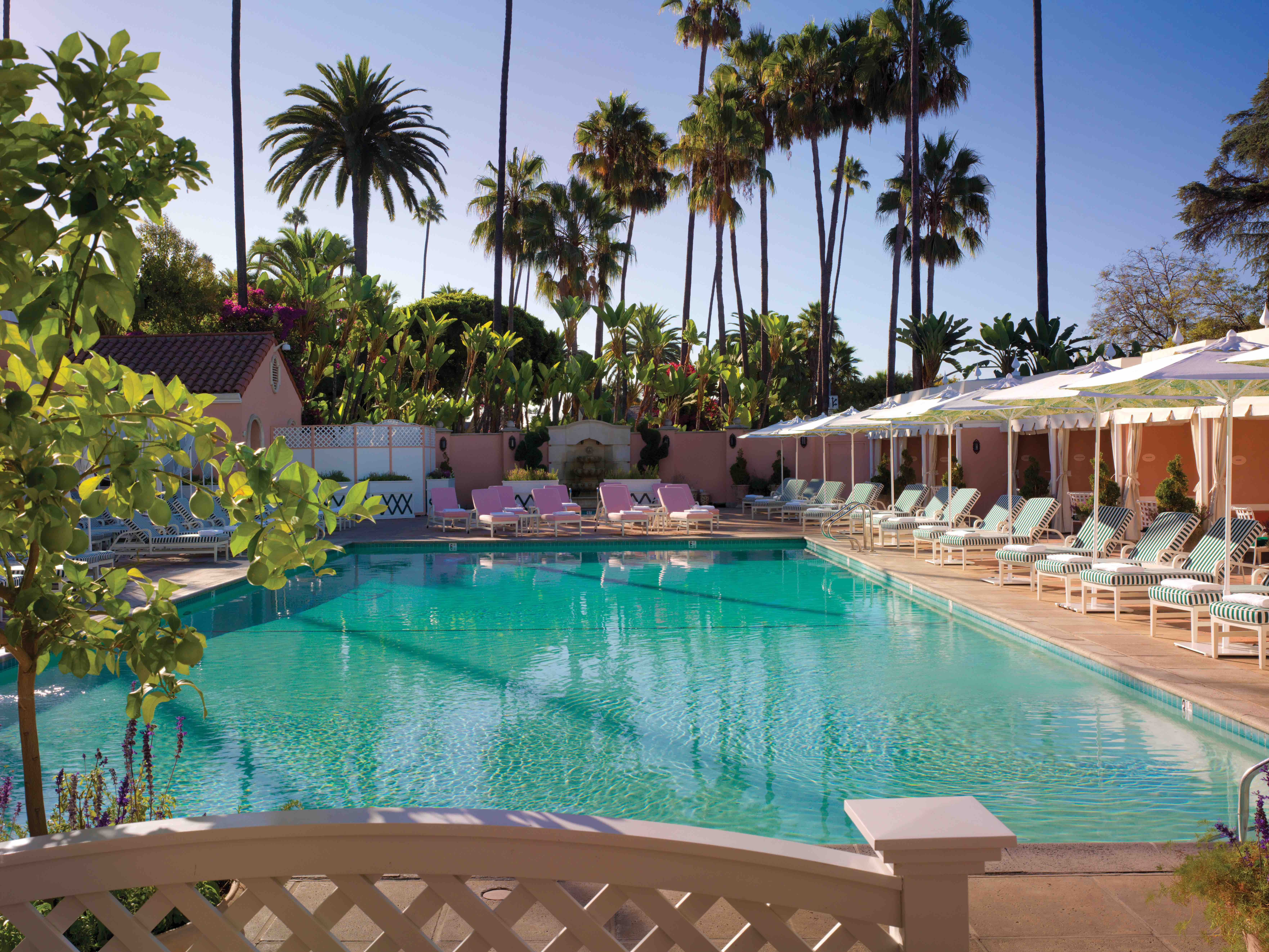 Pool At The Beverly Hills Hotel