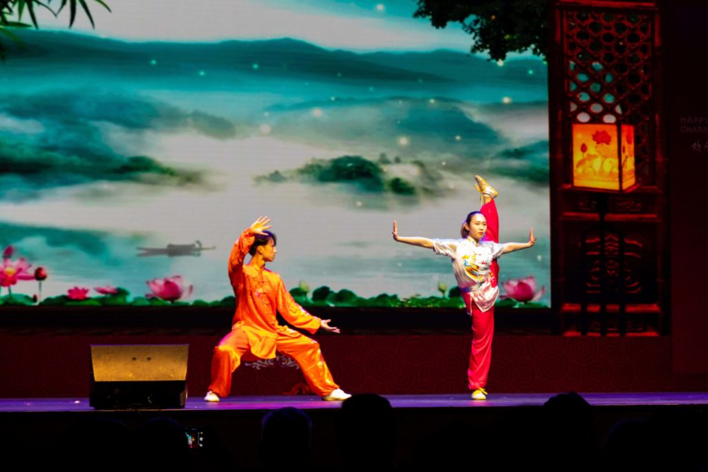 Chinese martial arts performed Tianjin Wushu Regiment